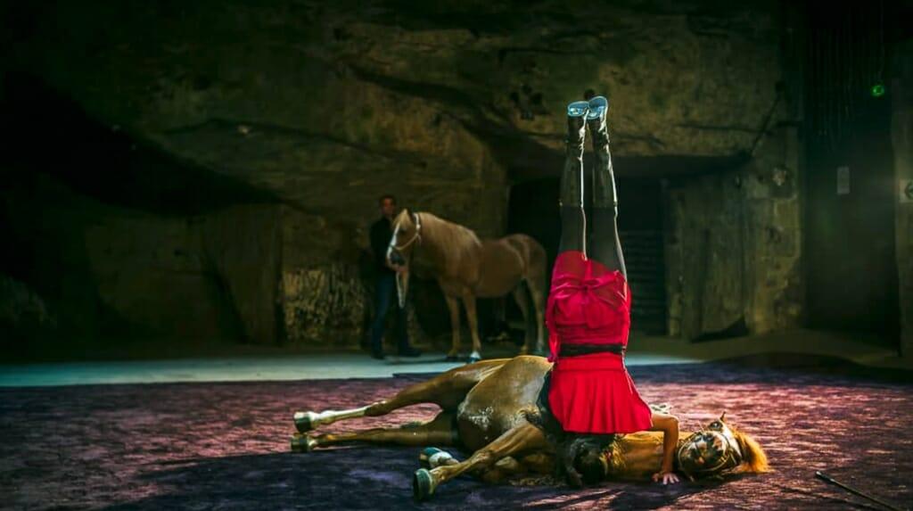 Cheval en Cave 2015